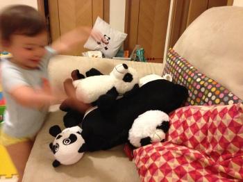 Auntie Son Son really likes pandas