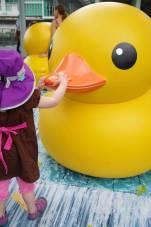 Hello duck!