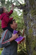 Haida Gwaii 2014-07-20 18-06-35